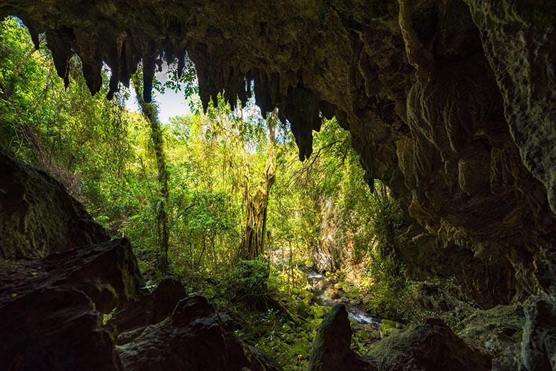 Blick aus einer Höhle im El Nicho Nationalpark